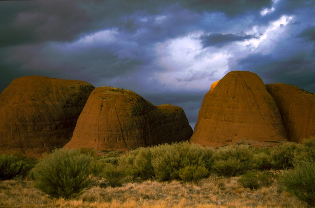 Maras-12-1024x677 AUSTRALIA